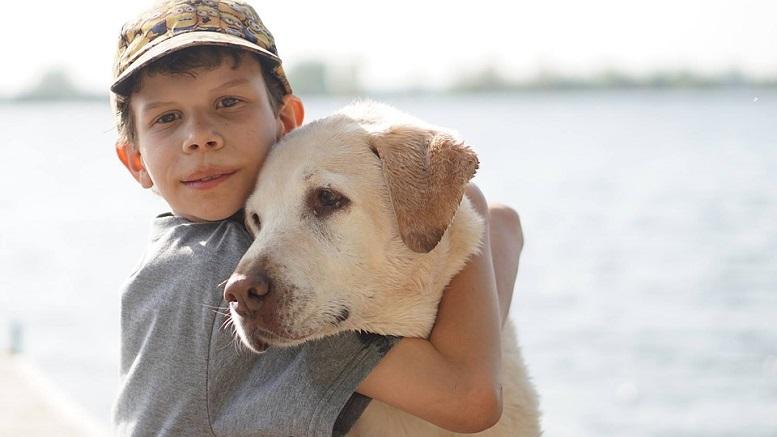 Mensch & Hund